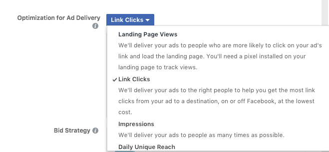 Screenshot Facebook Ads Manager ad delivery options
